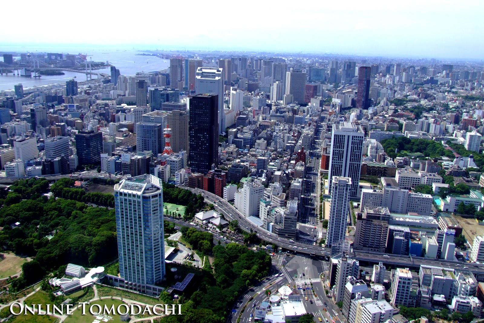 Online Tomodachi: Tokyo City Sky View