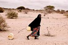 FAO, WFP warn against ignoring famine alarm in Yemen, Africa