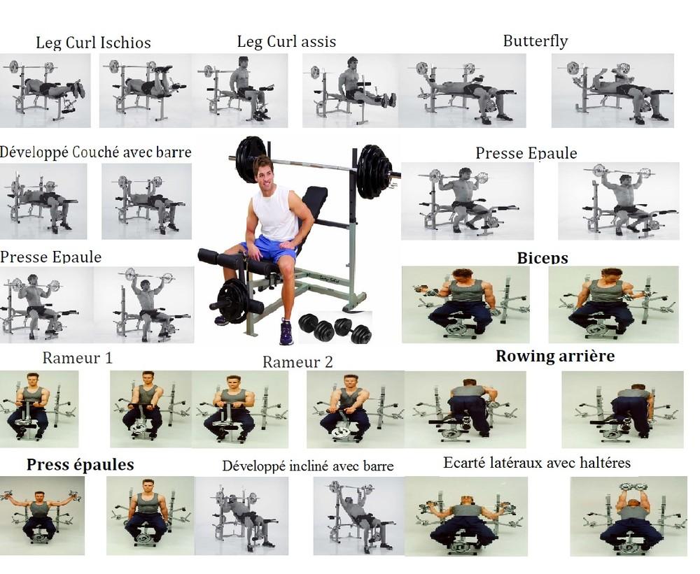 Programme gold gym club gold gym club - Programme musculation avec banc domyos ...