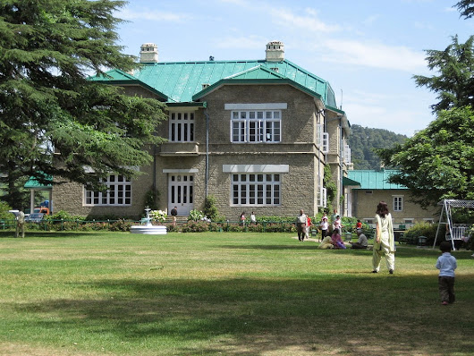 Enjoy Breathtaking Natural Beauty in Chail