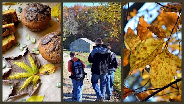 jesien, liscie jesienne, jesienny spacer