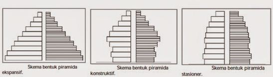 Macam-macam Piramida Penduduk Indonesia
