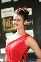 Meenakshi Dixit in Red One Shoulder Red Zipped up gown at IIFA Utsavam Award 34.JPG