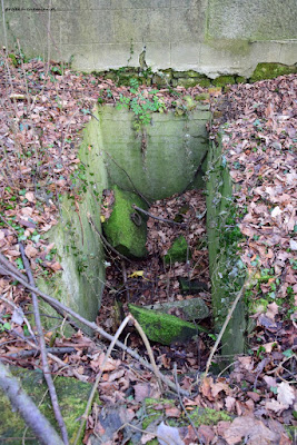 Cmentarz i ruina kaplicy we wsi Gaszów