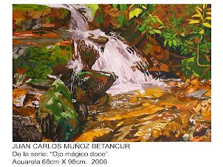 Juan Carlos Muñoz artista Colombiano