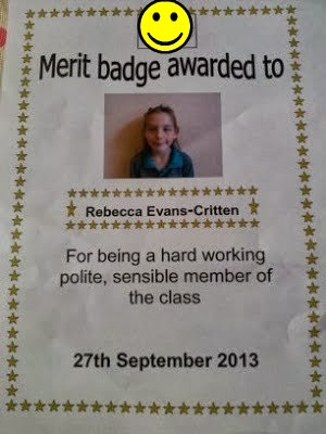 , Merits, Captains and Swim Badges