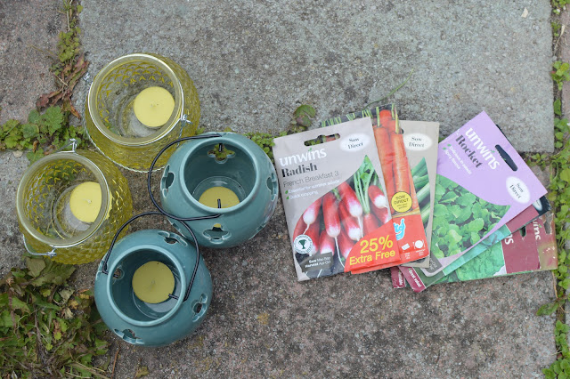 A beginners guide to growing your own vegetables seeds
