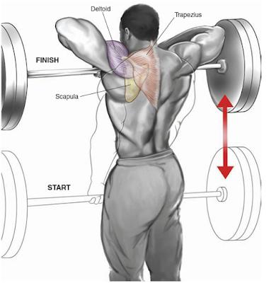 4-Weeks Muscle Building Training Plan