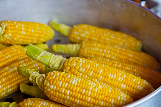 Pot Filled with Corn on the Cob