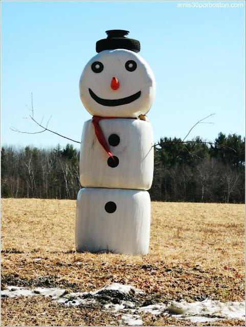 Muñeco de nieve decoración Pioneer Valley