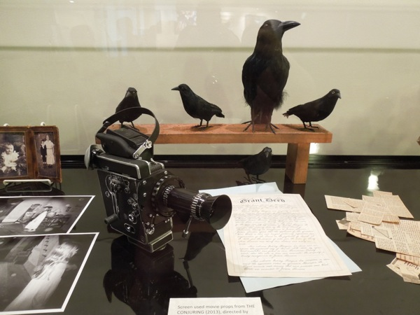Conjuring camera stuffed bird movie props