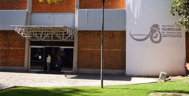 Museo paleontología Guadalajara