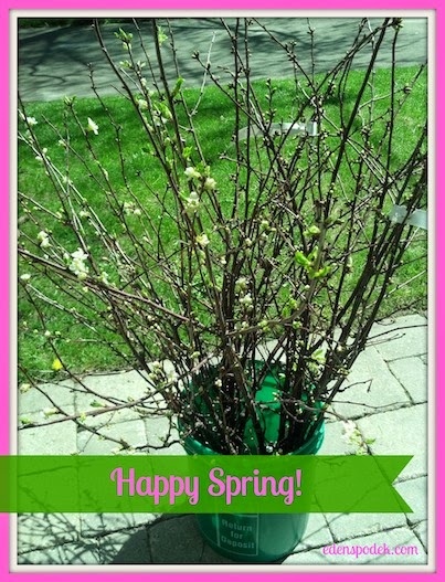 Happy Spring! Visit EdenSpodek.com