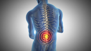 Exercises for pain in the back and lower back