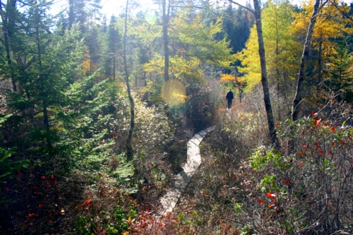 Crowbar Trail, N.S.