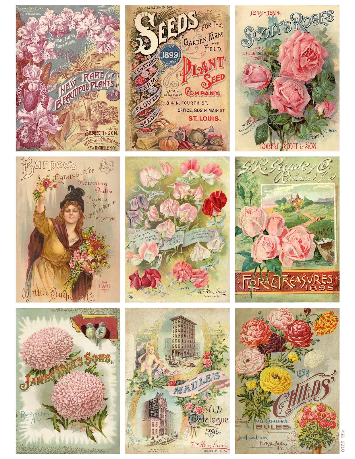 Jodie Lee Designs Free Printable Download Vintage Seed