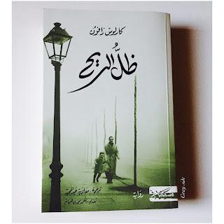 رواية ظل الريح .. مقبرة الكتب المنسية pdf ل كارلوس زافون