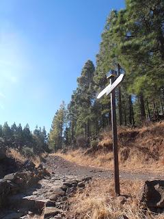 camino a Cruz de Tejeda