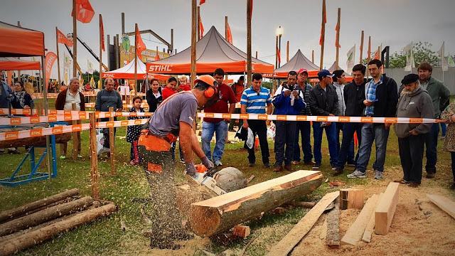 Stihl, la empresa alemana estará presente en la Feria Forestal 2018 #StihlEnLaForestal