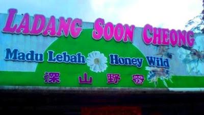 Ladang Soon Cheong Ladang strawberry cameron higland brinchangLadang strawberry cameron higland brinchang