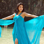 Shruti Hassan Hottest Photos in Blue Dress