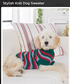 Stylish dog sweater free knitting pattern