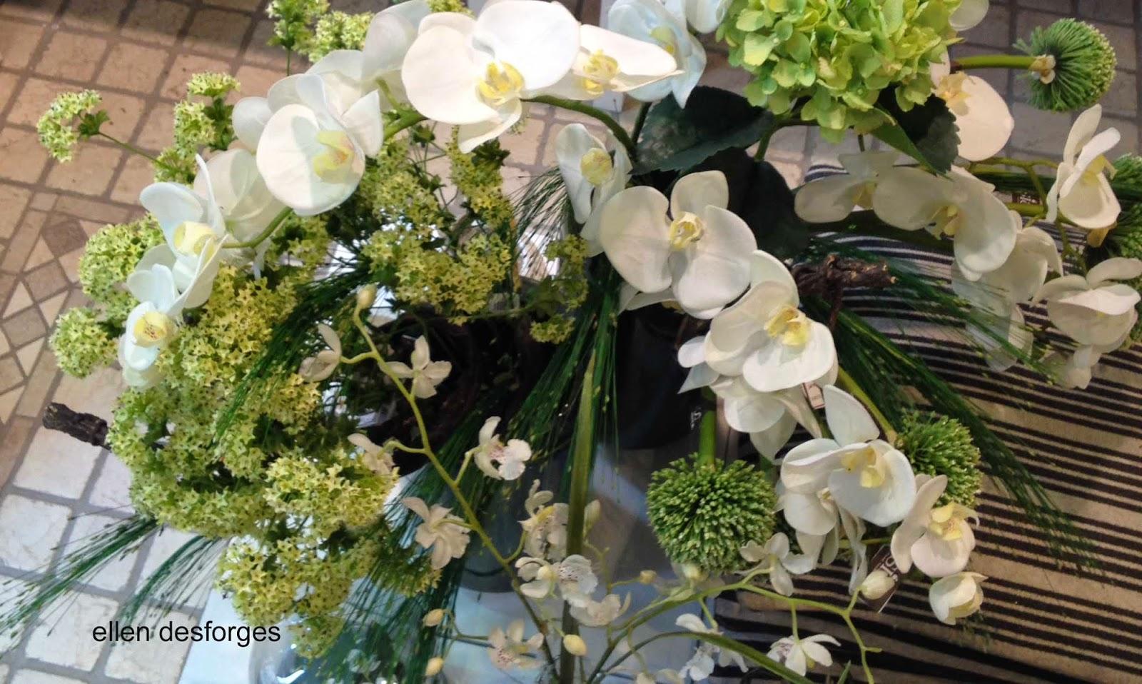 ellen desforges orchid es la tige ou en pot les. Black Bedroom Furniture Sets. Home Design Ideas