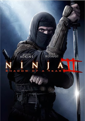 Poster Of Hollywood Film Ninja Shadow of a Tear (2013) In 300MB Compressed Size PC Movie Free Download At worldfree4u.com