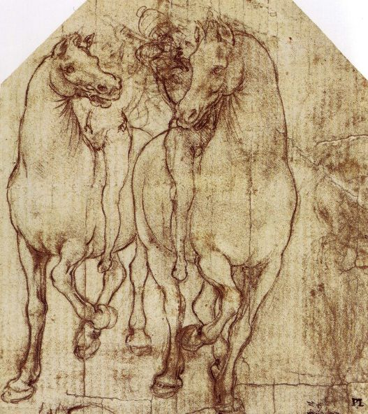 Study of Horses & Riders