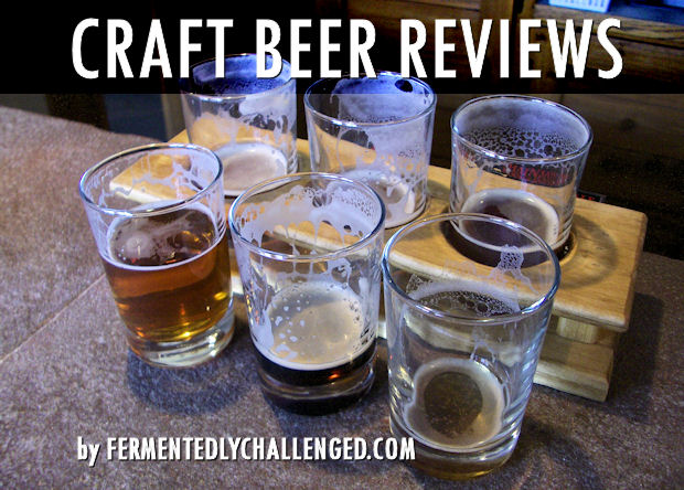 Craft Beer Reviews by Style
