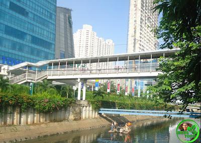 Sungai di Jakarta bersih karna Foke. Mungkin maksud anda adalah Ahok