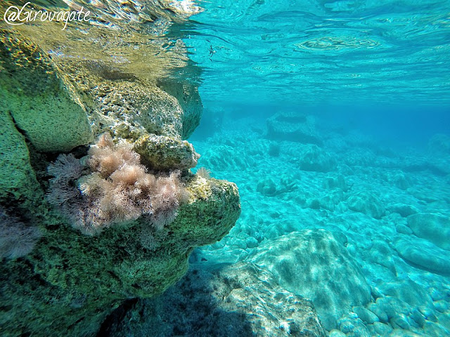 karpathos lefkos mare