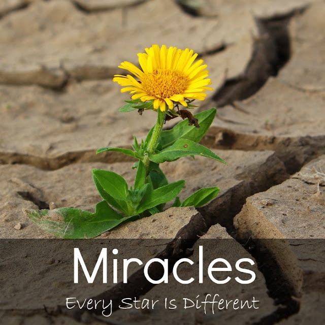 Miracles-Crazy things that happened in order to help a special needs family receive the help they needed.