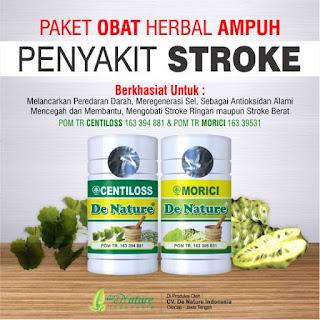 Obat Herbal Stroke, Obat Herbal Stroke ampuh, Obat Herbal Stroke alami, v mujarab