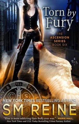 Torn by Fury by S.M. Reine