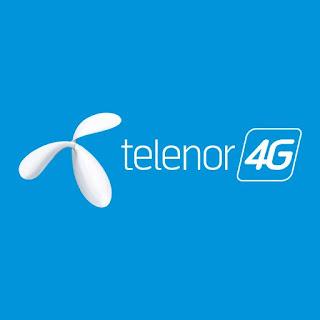 Telenor Pakistan's 345 Campus Receives Leemans+ Certification