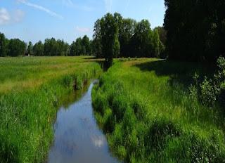Foto cover De kwaliteit van drinkwaterbronnen in Nederland