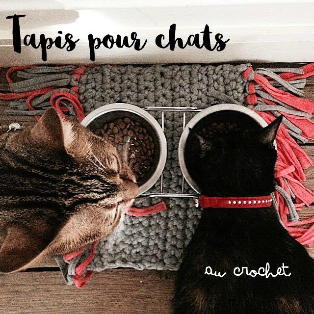 creating in paris tapis pour gamelle des chats diy crochet. Black Bedroom Furniture Sets. Home Design Ideas