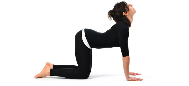 Cow Pose Yoga For Back Pain In Hindi