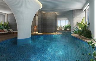 Bể bơi trong nhà - ecolife capitol