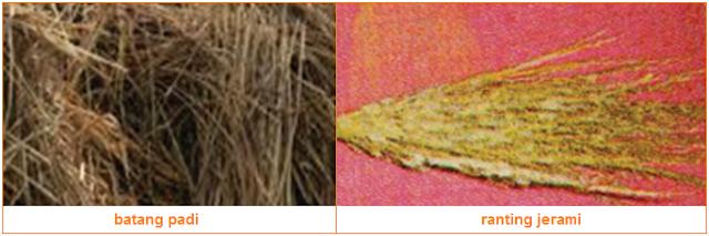 Gambar jerami dan Batang Padi