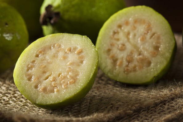How To Grow Guava Trees From Seeds