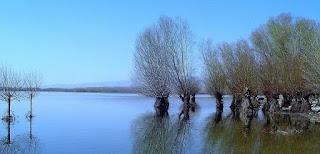 Lake (Göl) İle İlgili İngilizce Cümleler