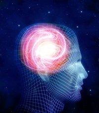Νευροεπιστήμες - Η ελευθερία της βούλησης ως φυσικό-νοητικό φαινόμενο