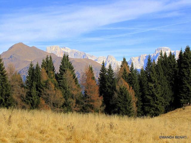 Trentino Alto Adige, Montagne dal Passo Brocon
