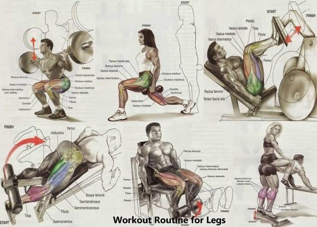 Gym workout routine b