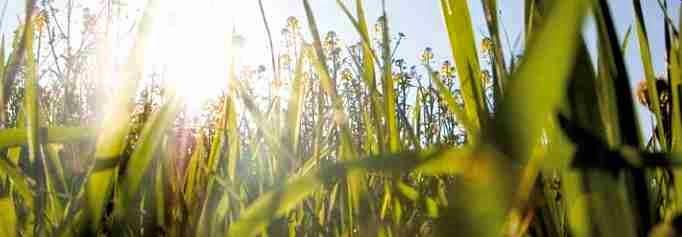 wattner sunasset 5 2015 solarfonds solarpark darlehen deutschland zinsen 3 prozent 5 umweltfonds hochrentabel