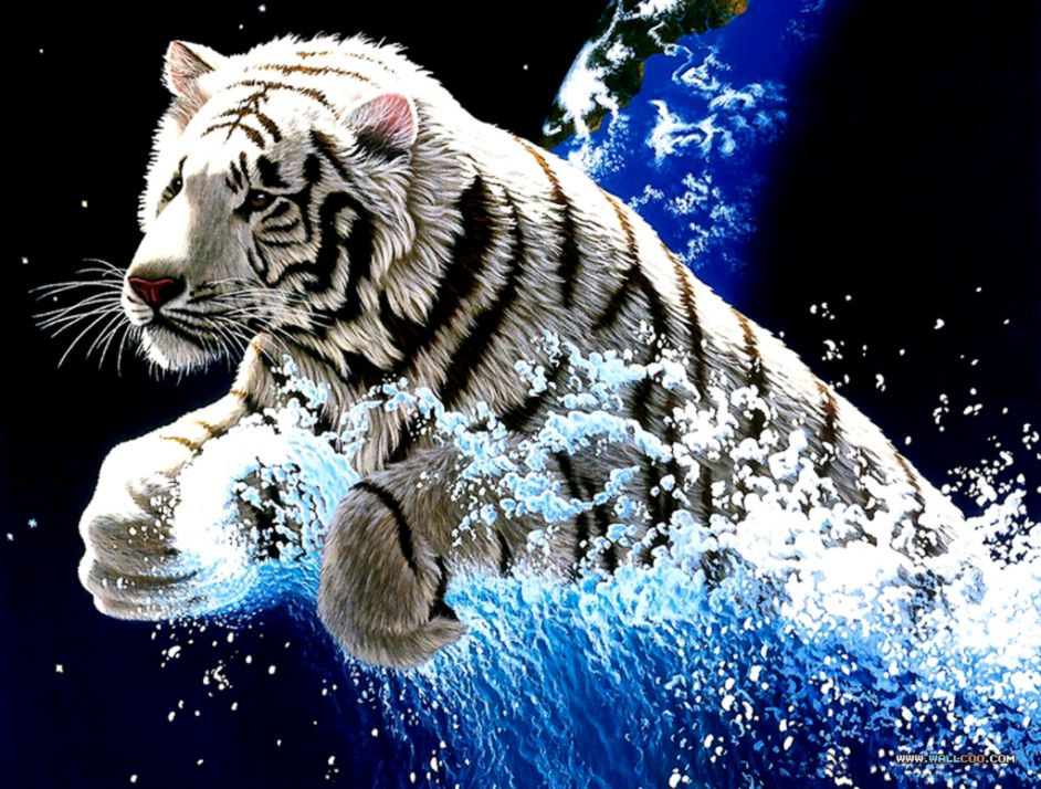Free 3d Animated White Tiger Wallpapers Download