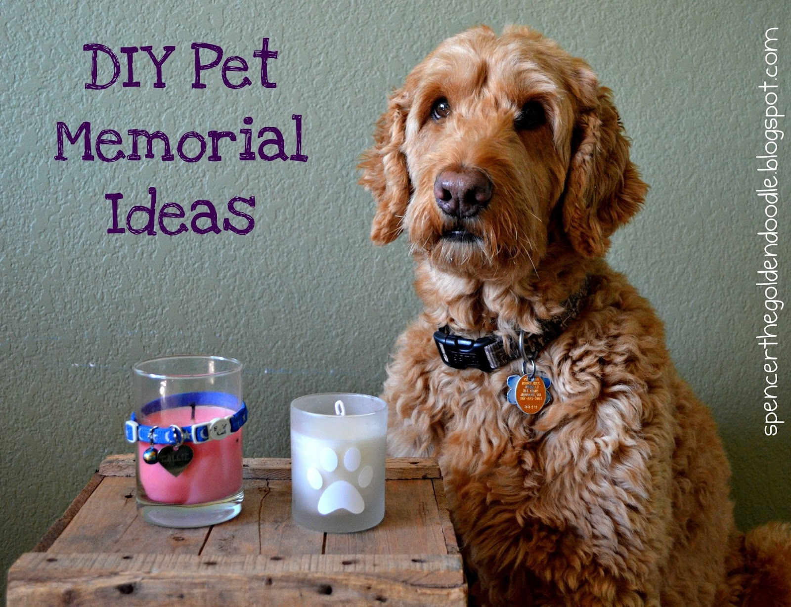 Completely new Spencer the Goldendoodle: Pet Memorial Book, DIY, Paying it Forward JL31