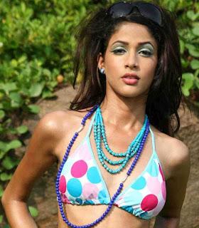 lavanya tripathi hot bikini photos girlz around the world